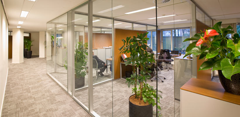 Glass Partition Walls | Glass Walls Florida | Orlando Glass